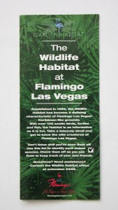 Flamingo Wildlife Brochure