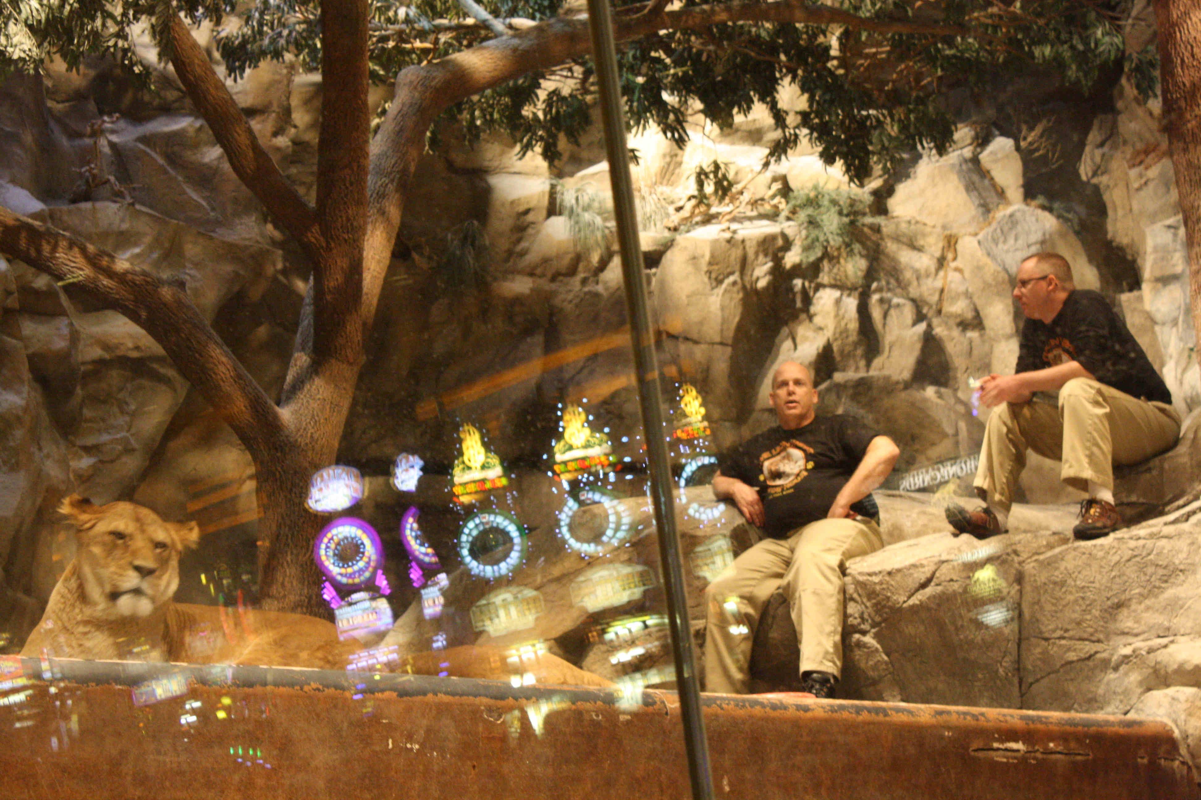 Siegfried and Roy\'s Secret Garden » Vegas Mavens