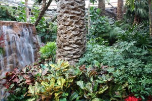Mirage Atrium