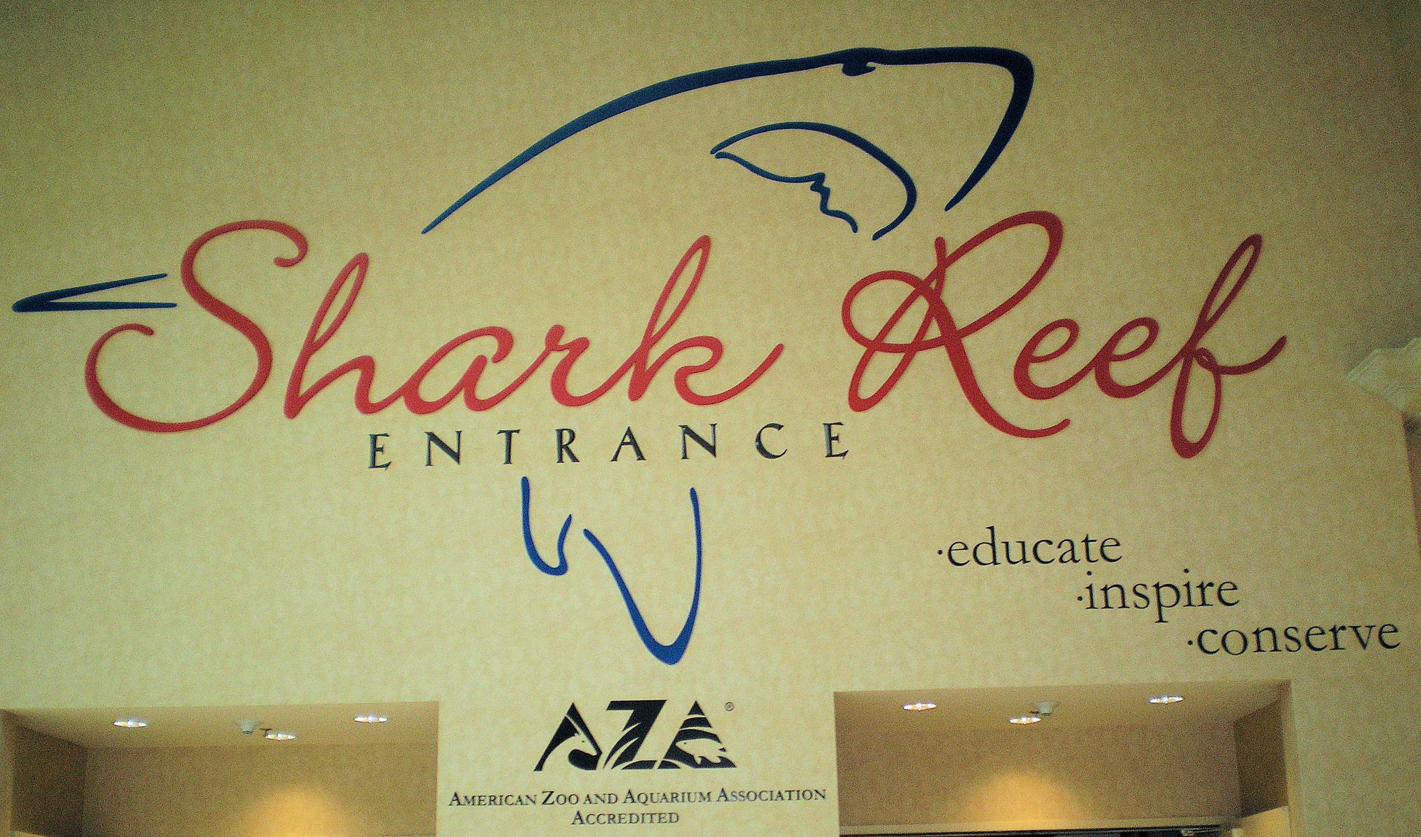 Discount coupons for shark reef mandalay bay